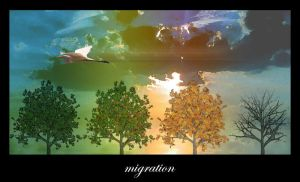 migration by environment