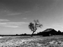In the middle of nowhere by ruuca