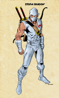 Storm Shadow by Balla-Bdog
