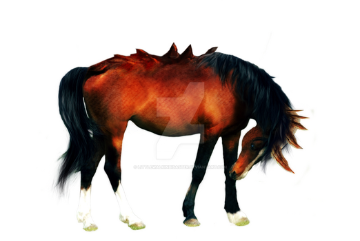 War Horse - Preview by LittleWalkinDisaster