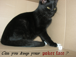 Can you keep your poker face? by Ashie-kun