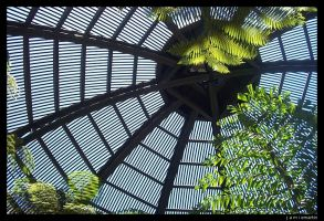 biodome by delici0us
