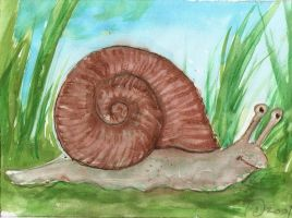 Happy Snail by salshep