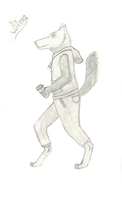 Wolf Anthro by akawolf1