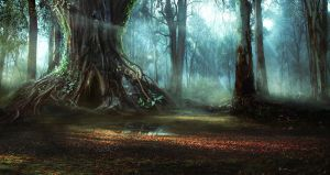 Moody Forest by Graknaz