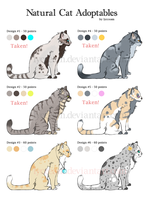 Natural Cat Adoptables by lycceam