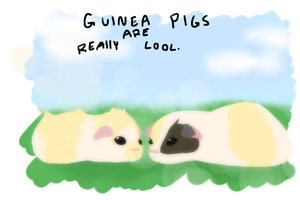 Guinea Pigs Are Cool by Otterlore