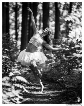 Dancing In The Forest by ChenLiTao