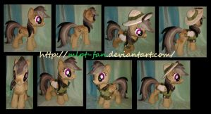 19 inches DARING DO removable outfit by MLPT-fan
