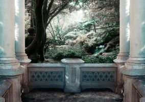 Premade background by anulubi