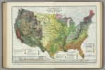 Natural Vegetation Map of the USA by FringerFrankie
