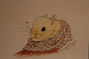 Baby Bunny by Marydos1997