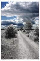 Infrared land by megadef