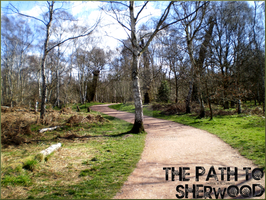 The Path to Sherwood 09 by Sk8rWolf