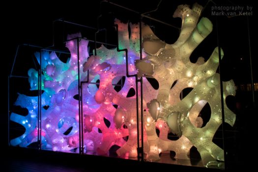 Amsterdam Light Festival X - Rhizome House by blizzard2006