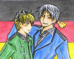 APH - Brothers colour update by tukhanh93