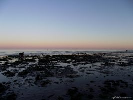 Rockpools at Dusk.. by AlfiBOh