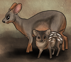 Pudu Deer by SanjanaStone