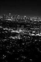 Los Angeles2 by gottee