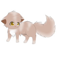 munchkin cat for adopt by snowflake95
