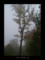 touching fog by ad-shor
