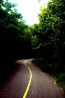 Life really IS a winding road by DrinkTheJuice