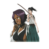Yoruichi and Byakuya by Narusailor