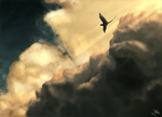 Flight by PorcelainPoppies