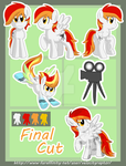 Final Cut Ref Sheet(commission) by MaquettePonet