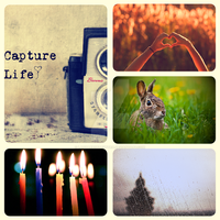 Capture Life by LadyAriessTemptra