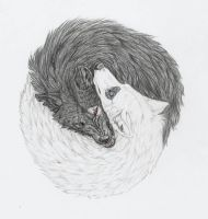 """Yin and Yang Wolves"" by mysteriouswhitewolf"