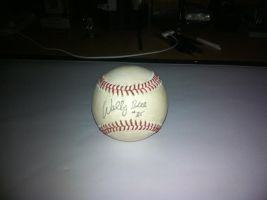 Major League BaseBall Signed by WDWParksGal-Stock