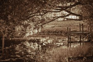 Under the Overhang sepia by chalutplease