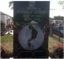 R.I.P the king. by BTRMusic