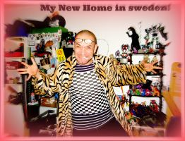 My New Home in Sweden by MushroomBrain