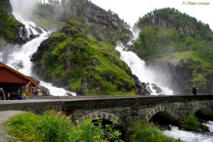 Latefoss by Toothrot