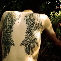 Learn to fly : Wings Tattoo by lisaaskew