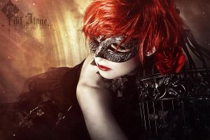Rose red by LilifIlane