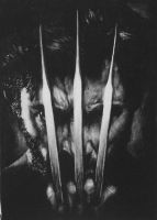 Wolverine by CubistPanther