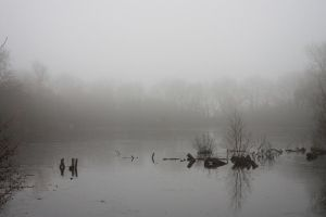 foggy waters by GRANNYSATTICSTOCK