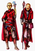 Red Wizards of Thay by Al-Jai