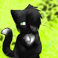 Contest Entry - Ravenpaw by SandriPaws