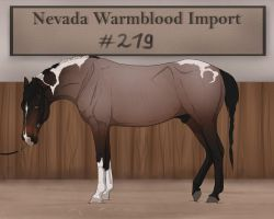 Nevada Warmblood 219 CLOSED by BRls-love-is-MY-Live