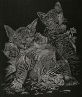 Scratchboard Kittens by GoodGirl-BadGirl