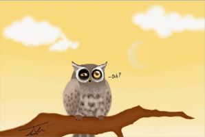 It's time to sleep little owl by NienorGreenfield