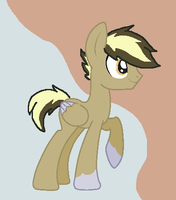.: Chocolate Chip? :. by EpiclyAwesomePrussia