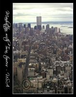 Manhattan with Twin towers by iFab