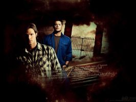 SPN - The only one by DaaRia