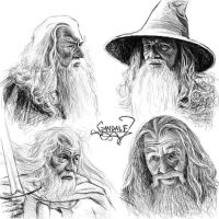 Gandalf sketches by Manweri