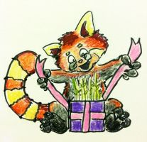 Red Panda Card Doodle by NycterisA